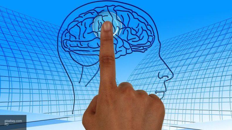 Общество: Изменение связей в мозге поможет заранее узнать, как подействует антидепрессант