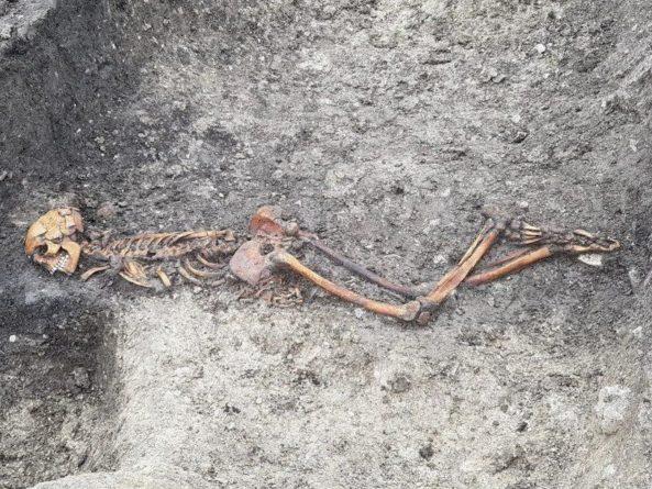 Общество: На месте будущей железной дороги в Англии найдена жертва древнего убийства