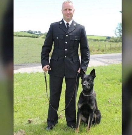 Общество: В Великобритании полицейская собака-новичок нашла пропавших женщину с ребенком, — Fox News