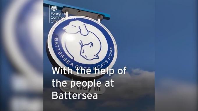 Общество: Главный кот-мышелов МИД Британии ушел в отставку