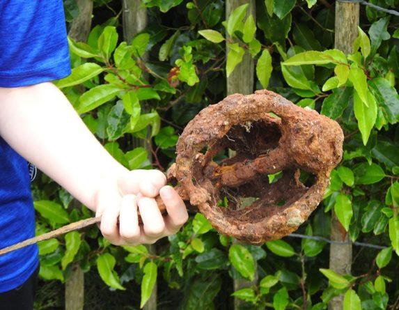 Общество: В Британии школьник нашел возле своего дома старинный меч