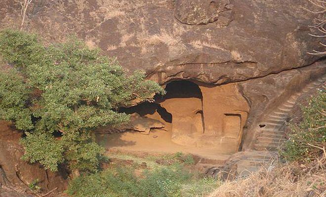 Общество: В погоне за тигром британец наткнулся на затерянный город древних в Индии