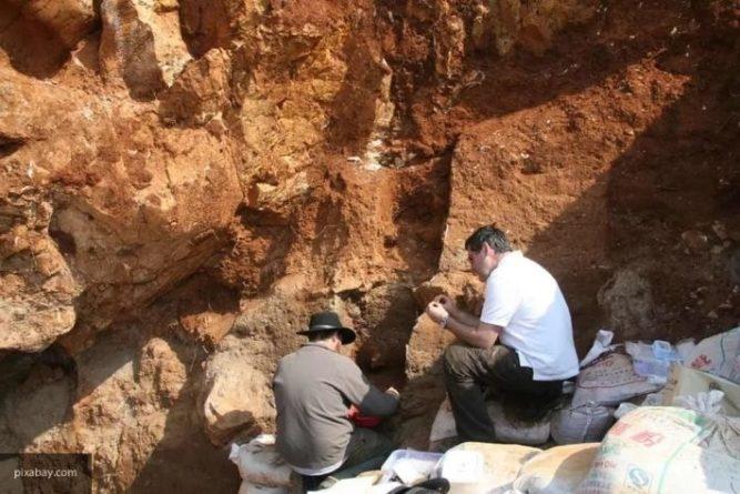 Общество: Археологи нашли 700-летнюю каменную голову в Англии