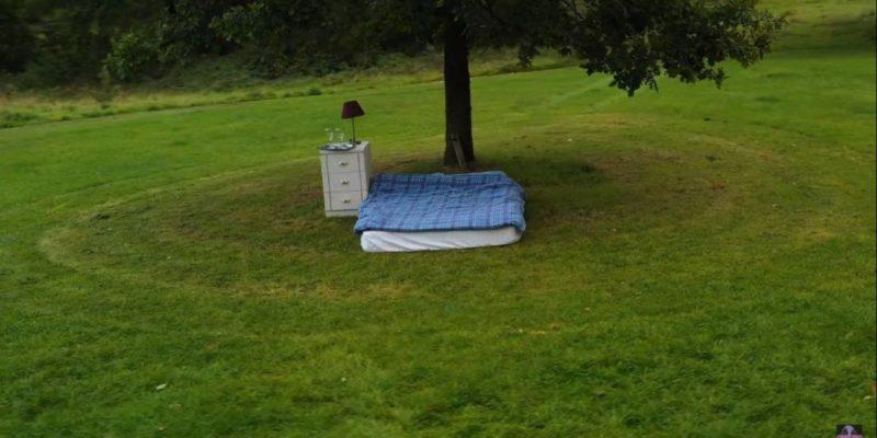 Общество: В Англии построили «худшее в мире место» для аренды ночлега — это кровать посреди поля. Неожиданно оно стало популярным — видео