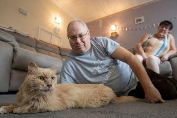 Общество: В Британии ушедший из дома после смерти хозяйки кот вернулся через три года