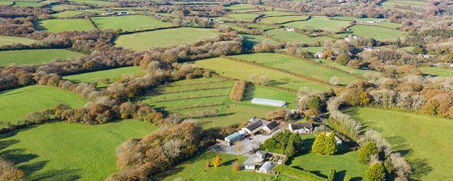 Общество: В Британии продают поместье с собственным кафе и виноградником