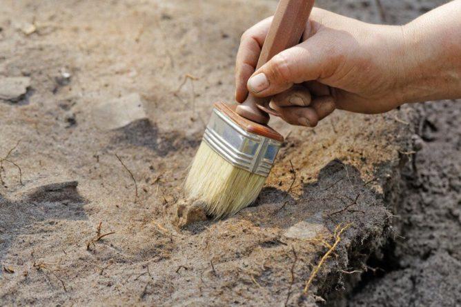 Общество: Жительница Англии нашла в своем саду мраморную плиту Римской империи