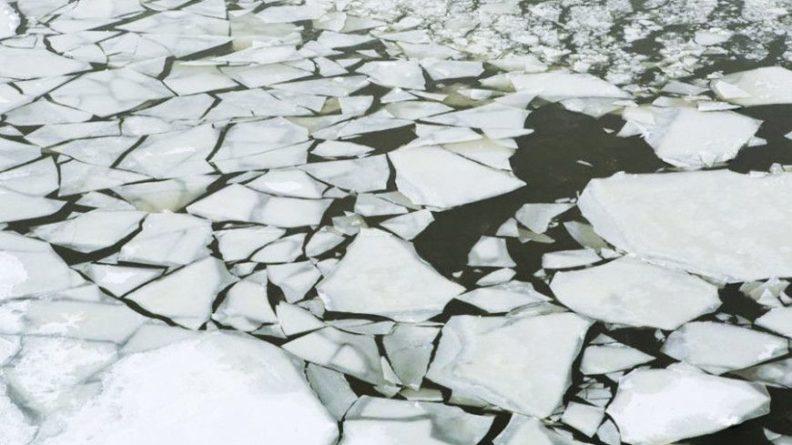 Общество: В Англии мужчина спас тонущую в ледяном озере собаку