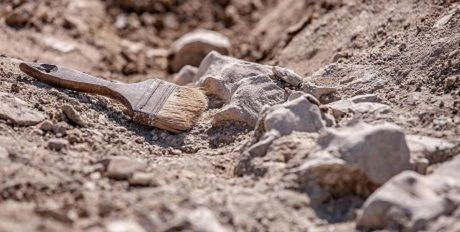 Общество: В Британии обнаружили древний храм
