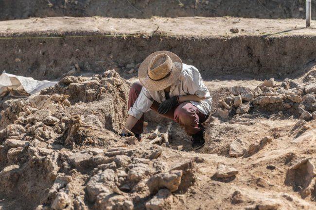 Общество: Загадочный памятник бронзового века найден в Британии