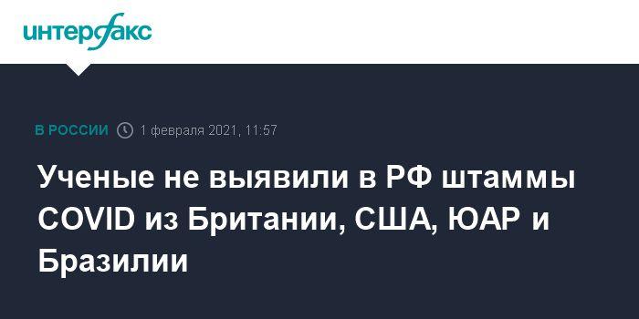 Общество: Ученые не выявили в РФ штаммы COVID из Британии, США, ЮАР и Бразилии