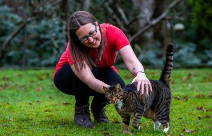Общество: Британка уволилась с госслужбы и стала «переводчицей с кошачьего»