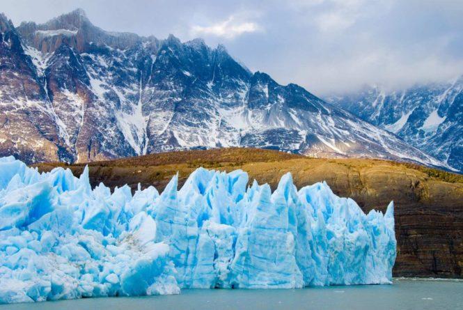 Общество: Учёные из Великобритании обнаружили под шельфовым ледником Антарктиды необычных животных