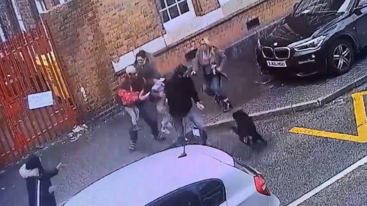 Общество: Опубликовано видео нападения сторожевого пса на маленьких детей в Англии