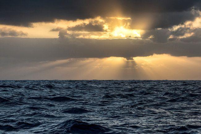 Общество: 21-летняя британка в одиночку пересекла Атлантику на гребной лодке