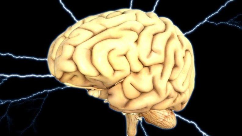 Общество: Ученые из США и Британии выявили главные качества психики у потенциальных экстремистов
