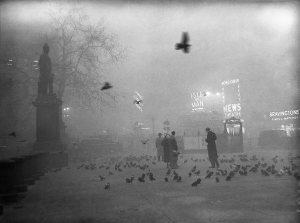 Общество: Великий смог 1952 года: как густой туман в Лондоне привел к коллапсу и человеческим жертвам
