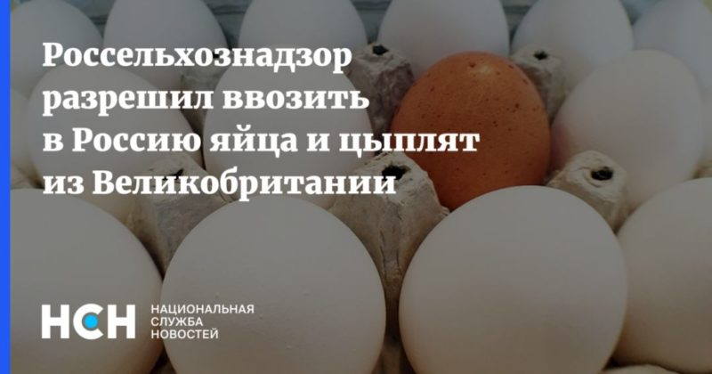 Общество: Россельхознадзор разрешил ввозить в Россию яйца и цыплят из Великобритании