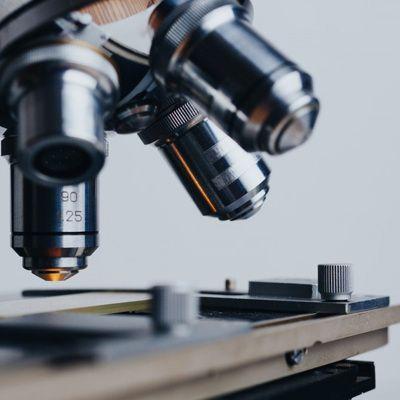 Общество: Новый штамм-мутант коронавируса обнаружен в Великобритании