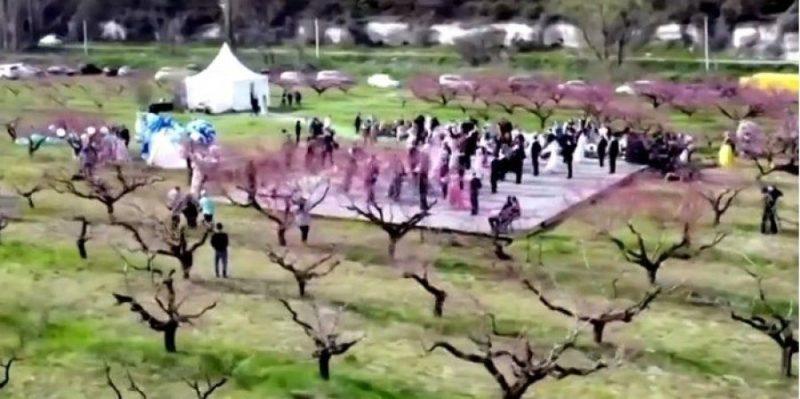 Общество: Посольство Украины в Лондоне раскритиковало «Reuters» за видео «весеннего бала» в Крыму