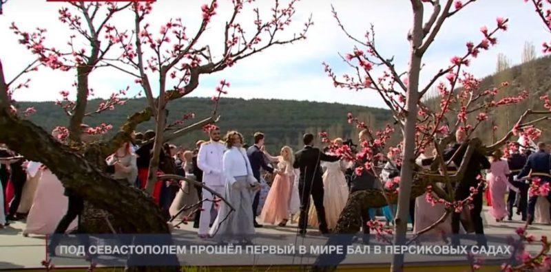 Общество: Бал возле Севастополя: посольство Украины в Британии возмутилось публикацией Reuters