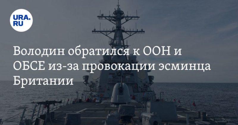 Общество: Володин обратился к ООН и ОБСЕ из-за провокации эсминца Британии