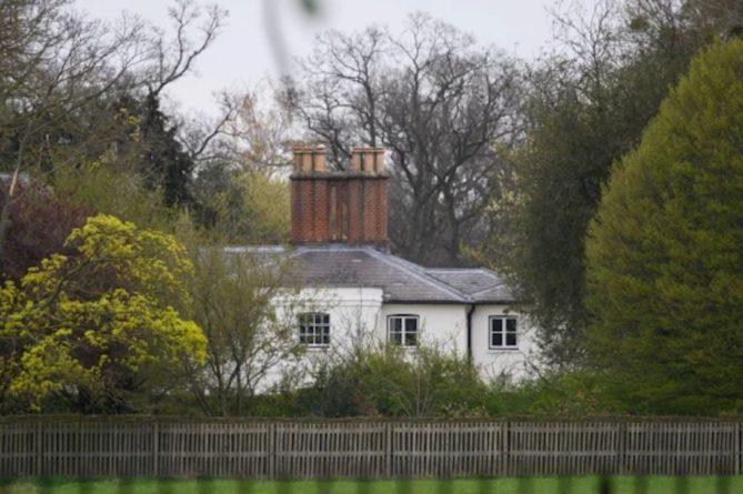 Общество: Принц Гарри и Меган Маркл могут лишиться жилья в Великобритании