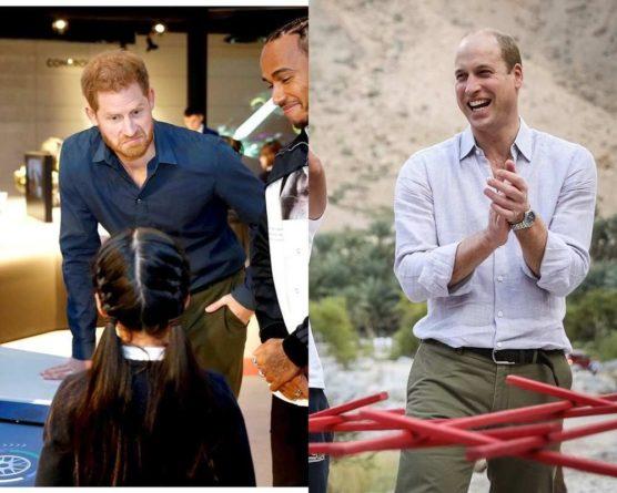 Общество: В Великобритании принц Уильям и принц Гарри открыли памятник принцессе Диане