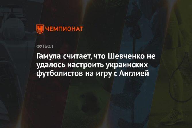 Общество: Гамула считает, что Шевченко не удалось настроить украинских футболистов на игру с Англией