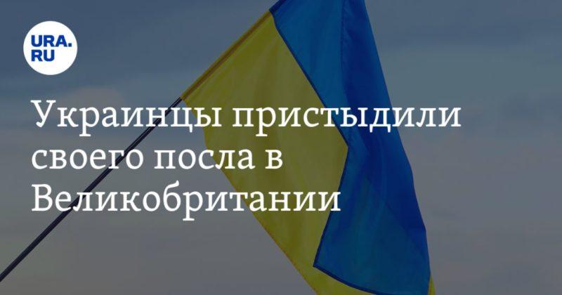Общество: Украинцы пристыдили своего посла в Великобритании