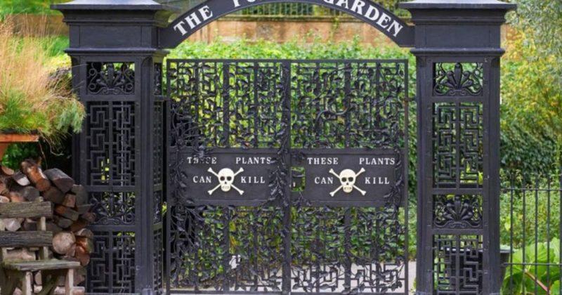 Общество: В Британии нашли самый ядовитый в мире сад, полный опасных растений