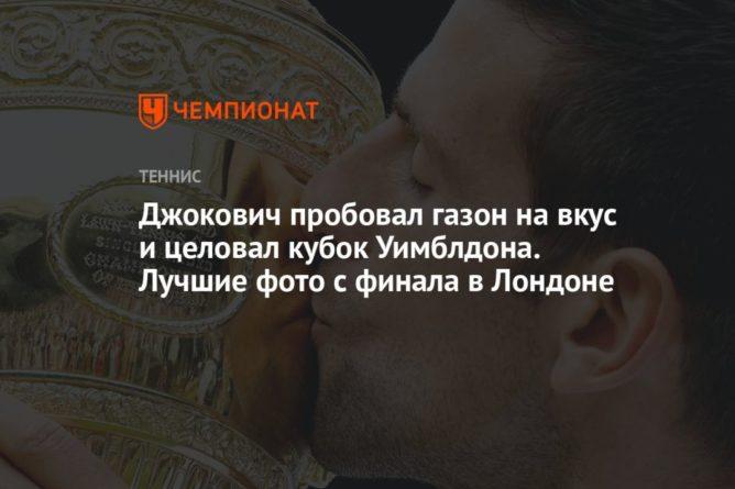 Общество: Джокович пробовал газон на вкус и целовал кубок Уимблдона. Лучшие фото с финала в Лондоне