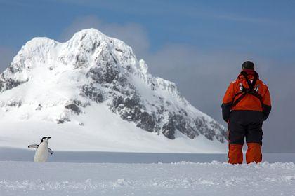 Общество: В Британии заявили о признаках готовности России «захватить» часть Антарктиды