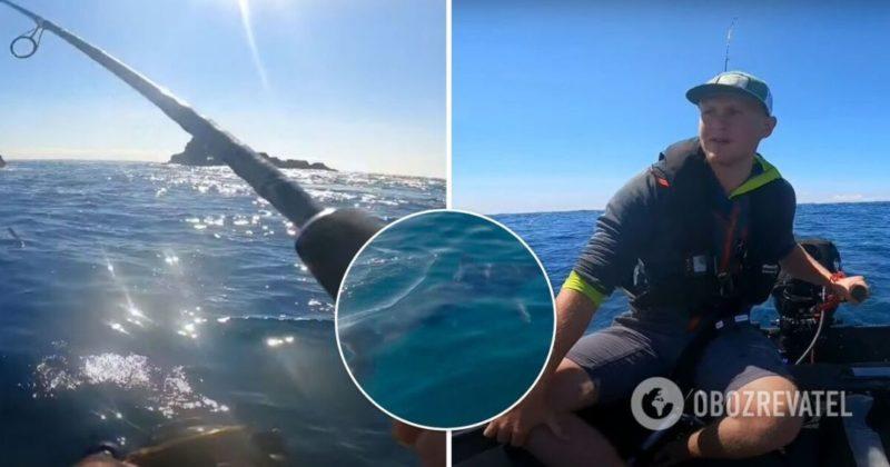 Общество: В Великобритании двухметровая акула кружила вокруг рыбака на маленькой лодке. Видео