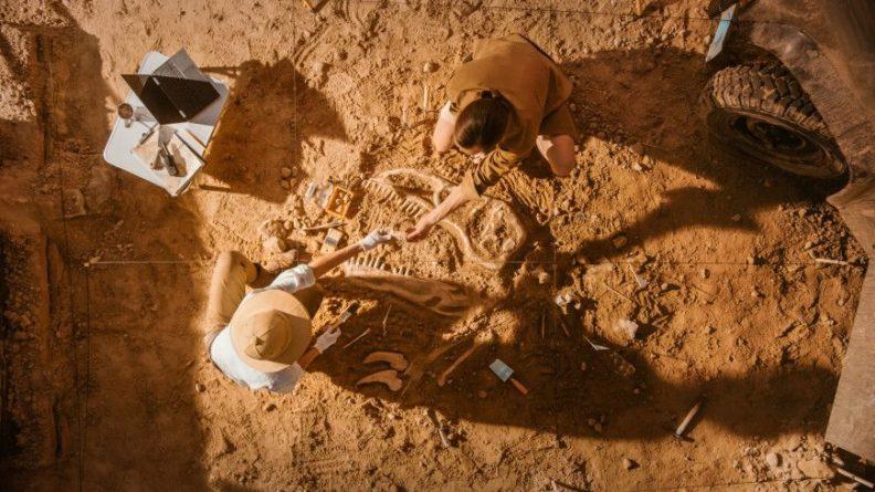 Общество: В Британии нашли «Помпеи Юрского периода»