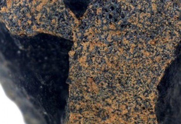 Общество: В Британии найден метеорит, старше Земли (фото)