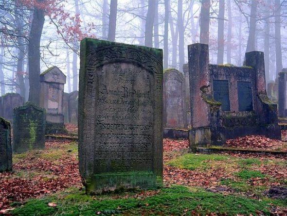Общество: В Великобритании барсуки разрушили одно из местных кладбищ и мира
