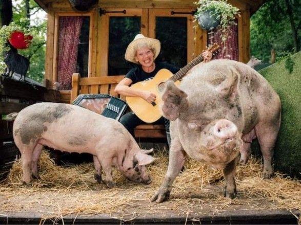 Общество: Двухдневное буги-вуги: в Англии организуют вечеринку для свиней
