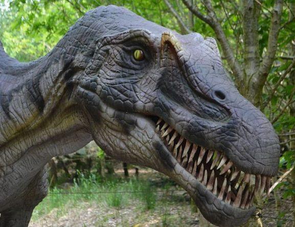 Общество: В Великобритании на пляже палеонтологи обнаружили десятки следов динозавров
