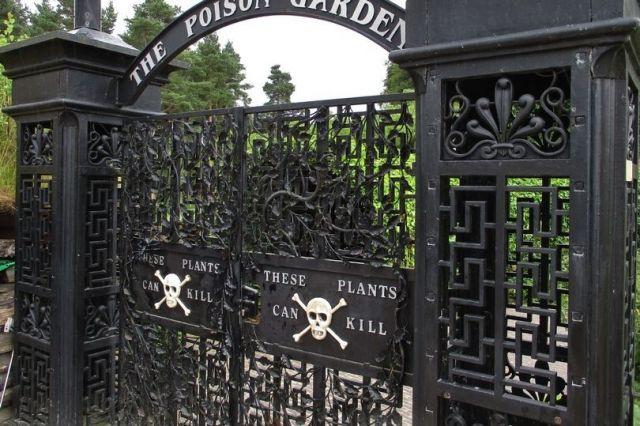 Общество: В Англии нашли самый смертоносный в мире сад (ВИДЕО)