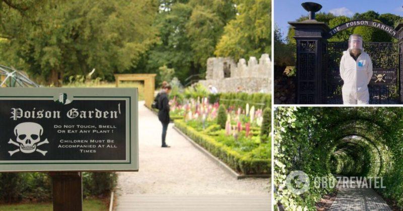Общество: Самый смертоносный сад растет в Британии: что известно – The Alnwick Garden Poison Garden