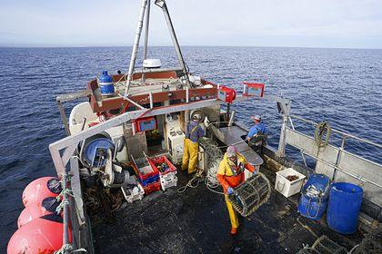 Общество: Великобританию призвали избавиться от опасных кораблей