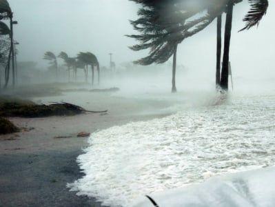 Общество: Ураган «Генри» может стать первым за 30 лет ураганом, обрушившимся на Новую Англию