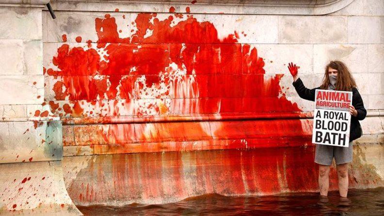Общество: Экоактивисты разрисовали мемориал напротив Букингемского дворца в Лондоне