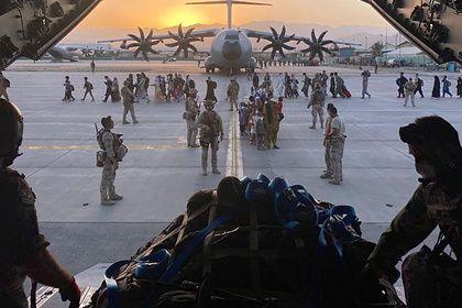 Общество: Британия выделила спецрейс для эвакуации собак и кошек из Афганистана