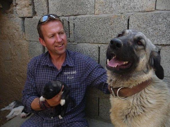 Общество: Минобороны Великобритании позволило эвакуацию животных из Кабула