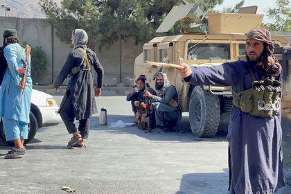 Общество: В Великобритании заявили о возможном сотрудничестве с талибами