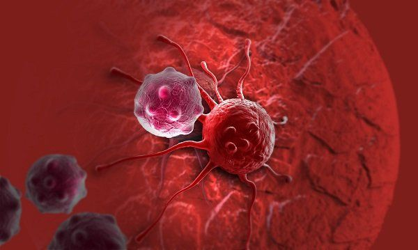 Общество: Ученые из Англии создали тест по выявлению 50 видов рака на ранних стадиях