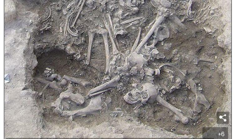 Общество: Археологи Англии нашли массовое захоронение крестоносцев, убитых с особой жестокостью