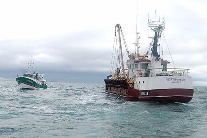 Общество: Франция пригрозила Великобритании из-за рыбы